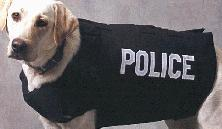 K-9 Protector